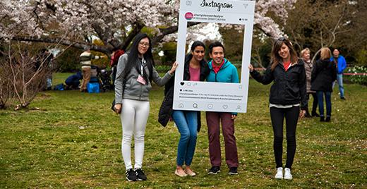 7edge digital media social advertising instagram advertising